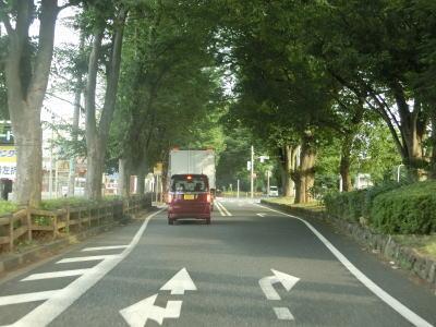 国道254号part2(埼玉県東松山市~本庄市)